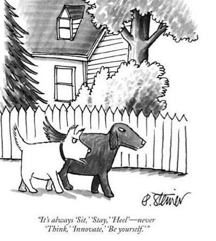 DeltaBluez Stockdogs: Dog Cartoons
