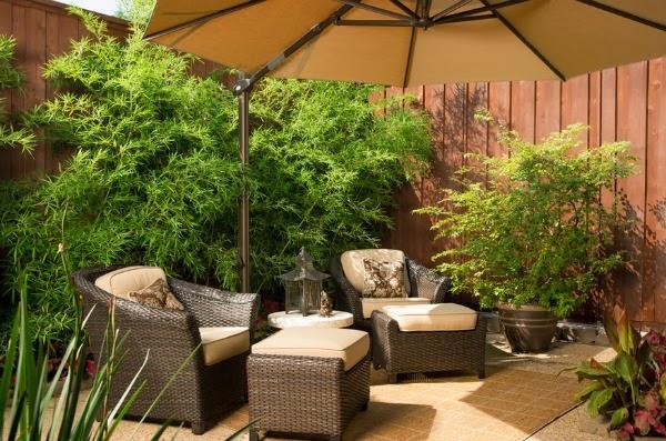 Dise ar un patio o una terraza guia de jardin for Programa para disenar jardines gratis en espanol