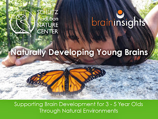 Easy Ideas for Naturally Developing Young Brains right in your pocket!