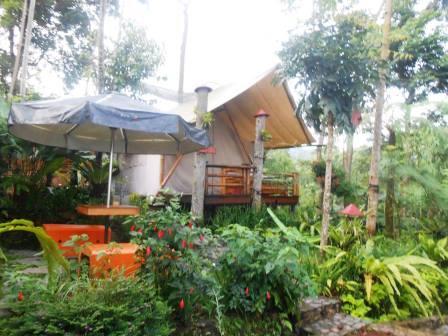 Pondok Rasamala Bogor