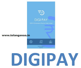 Apna CSC Digi Pay Software Download and Installation