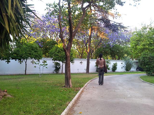 exteriores+consulado+portugal