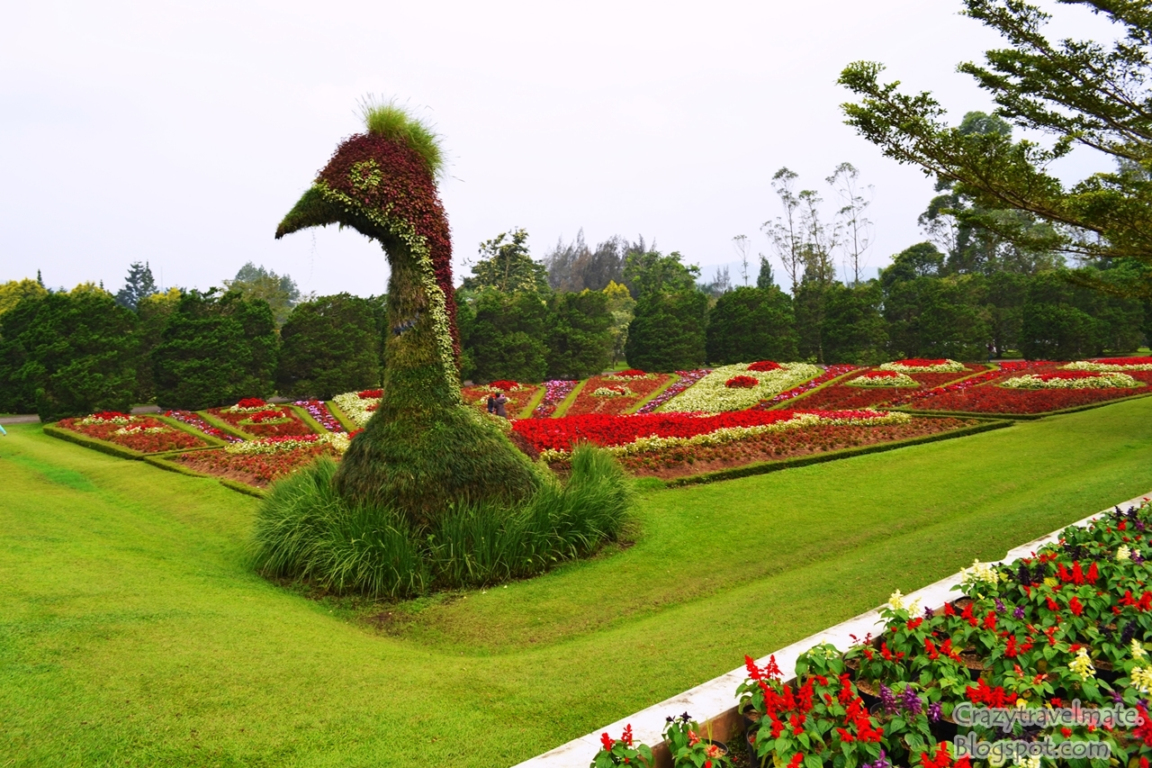 indahnya taman bunga nusantara crazy couple backpacker rh crazytravelmate com