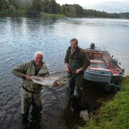 Salmon Fishing Scotland Tay, Perthshire, Scotland Salmon Fishing Report for week ending 11th October 2014.