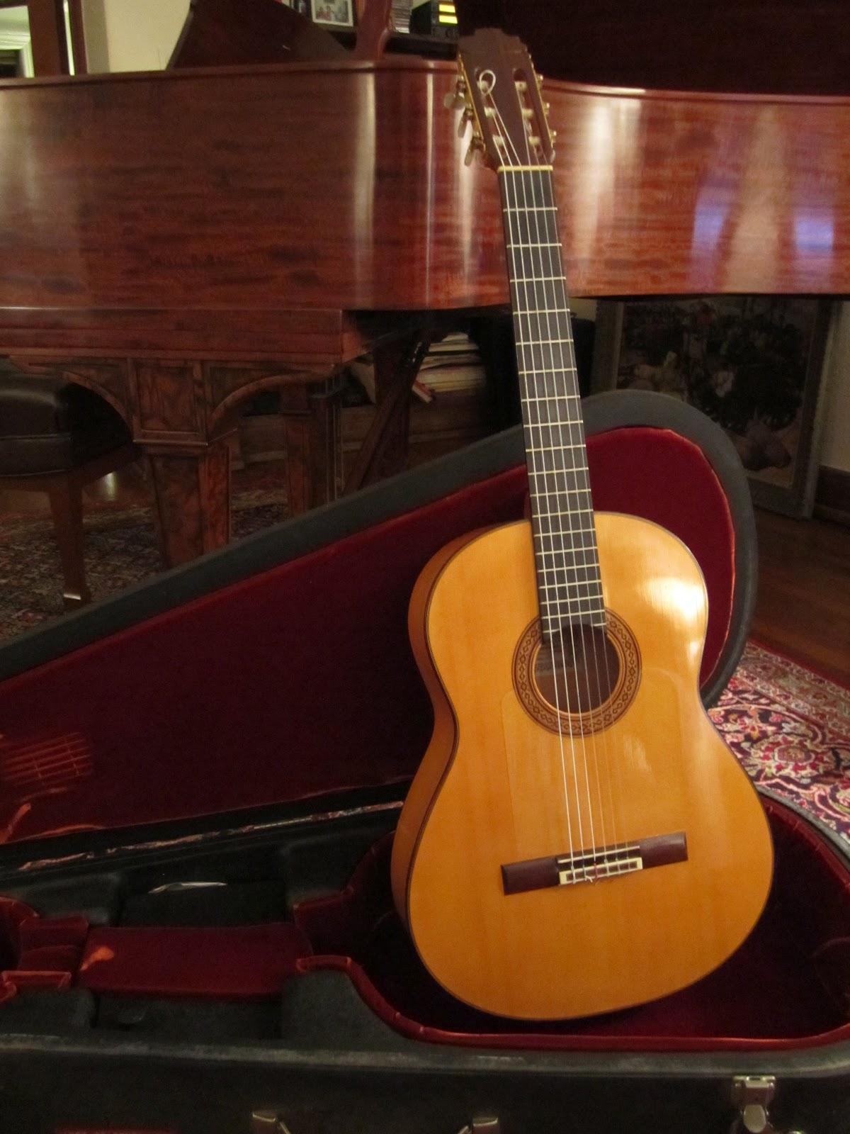 это латиноамериканская гитарная музыка образование действительно