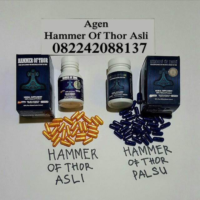 Pusat Distributor Hammer Of thor Asli Capsul Pembesar Fenis