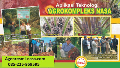 Cara Mengatasi Hama Penyakit tanaman Kelapa sawit