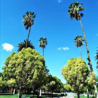 Plaza Pedro del Castillo, Cidade de Mendoza
