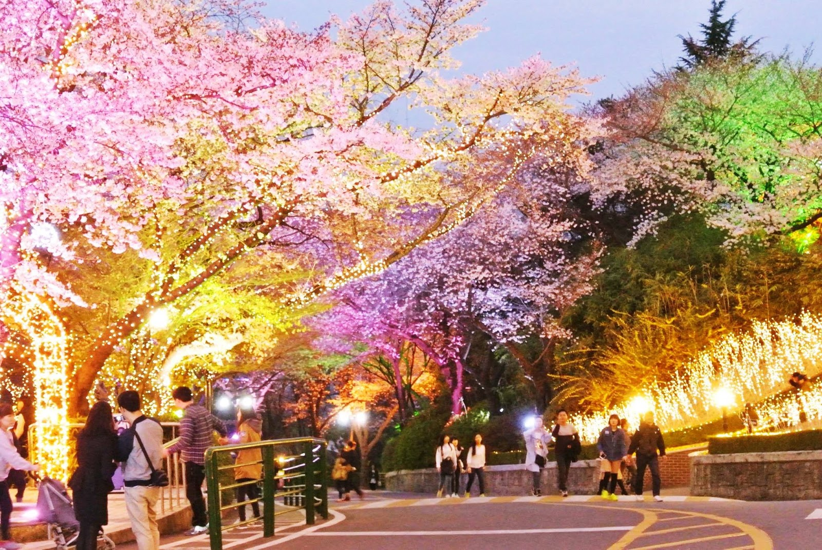Image result for n seoul tower romantic spring