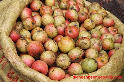 Điều trị mụn trứng cá hiệu quả nhờ giấm táo