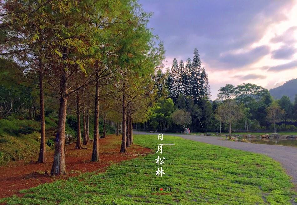 日月松林營地