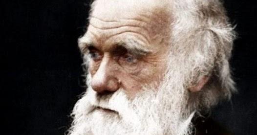 Pernyataan berikut berkaitan dengan evolusi: Pernyataan ...