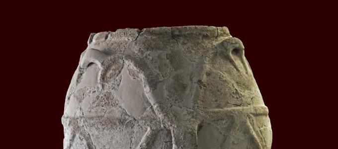 Δοκιμές επί αρχαίας κεραμικής αποκαλύπτουν το παλαιότερο ελαιόλαδο της Ιταλικής στην Σικελία