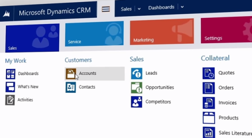 Microsoft Dynamics CRM Online Professional Review