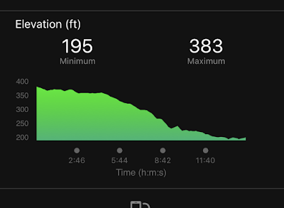 Graphic of the elevation of my run, which shows a steady descent from 383 feet to 195 feet.
