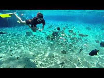Teluk Kletekan Malang