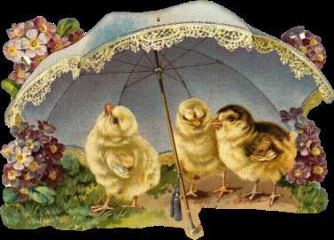 http://2.bp.blogspot.com/-sG2WzSiaSPk/UUR-1mA5uPI/AAAAAAAABhM/22HUfz6M7OY/s640/image+ancienne+Poussin+parapluie.png