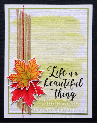 Heart's Delight Cards, MIFDC10, Colorful Seasons, Stampin' Up!