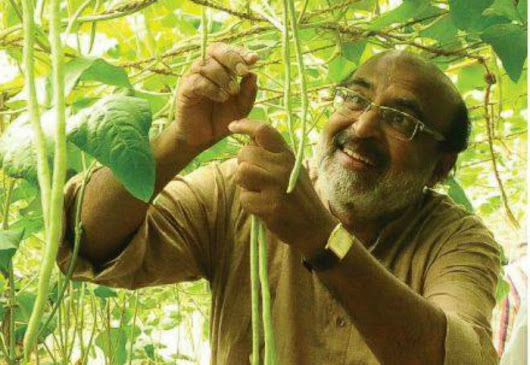 Divine Discovery of Organic Farming in Kerala