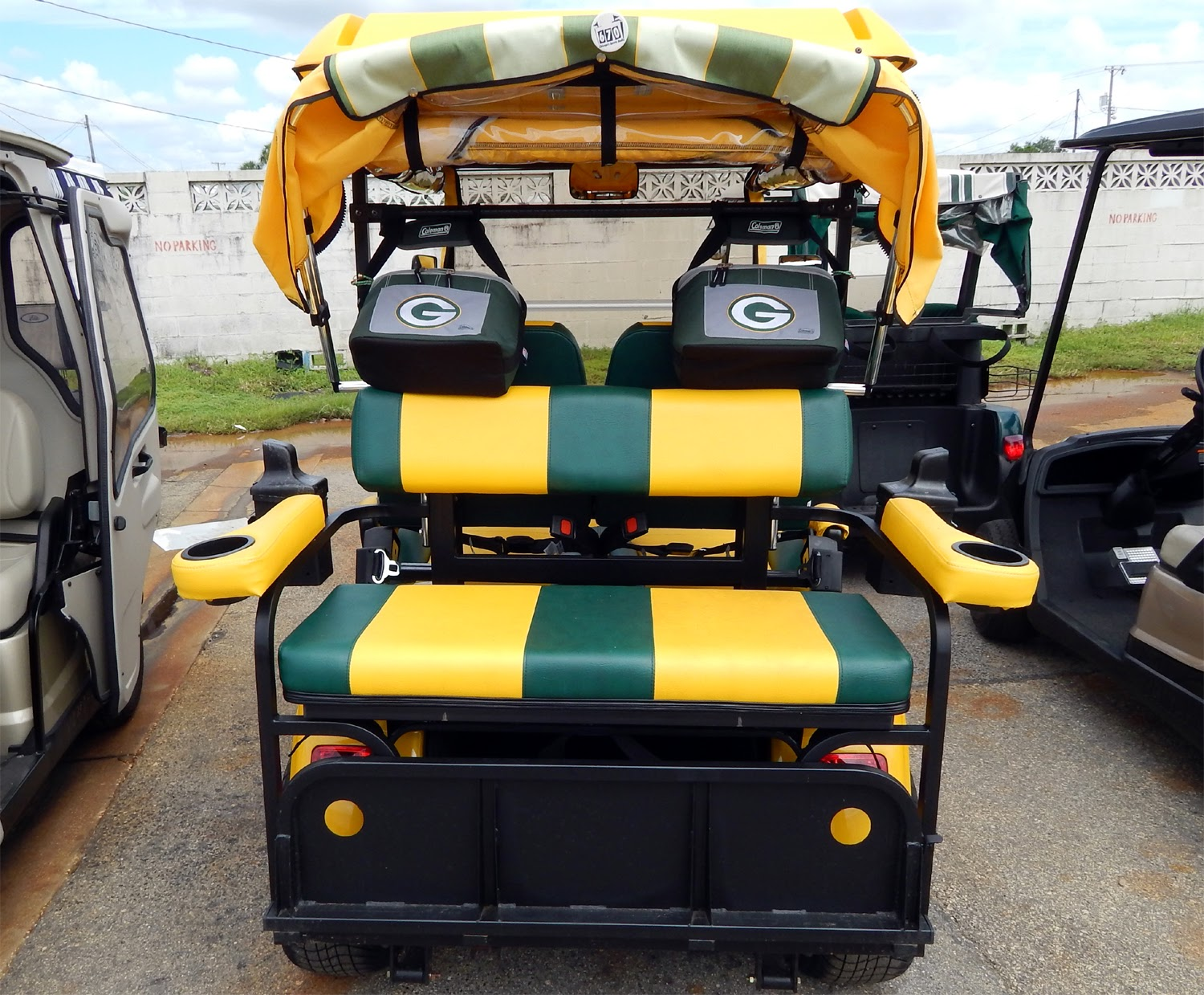 go 60 miles in customized green bay packers starev 48v ss. Black Bedroom Furniture Sets. Home Design Ideas