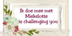 Miekelotte Challenges