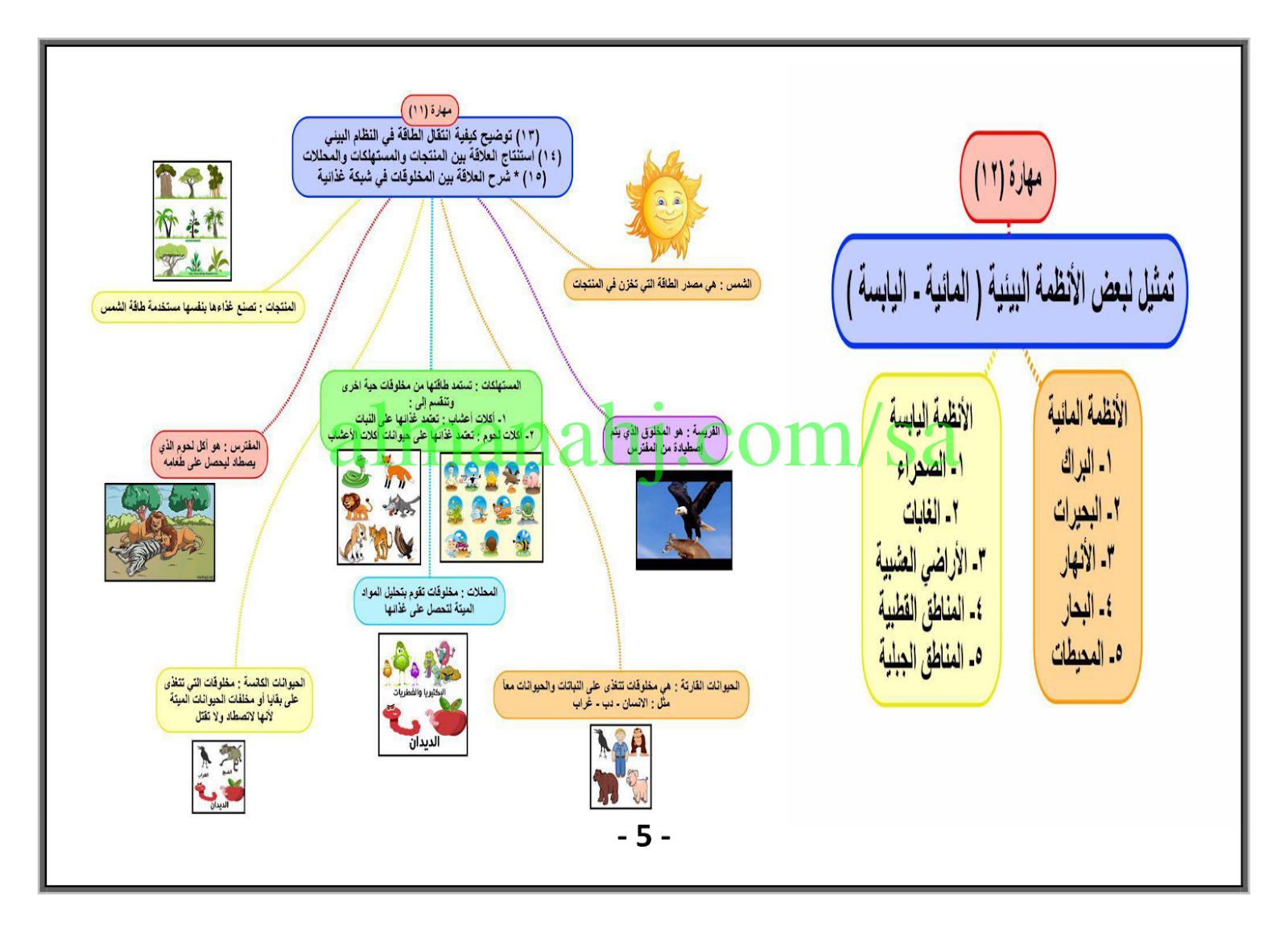 ملخص مهارات الصف الرابع علوم الفصل الأول المناهج السعودية