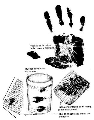 Investigación Criminalistica