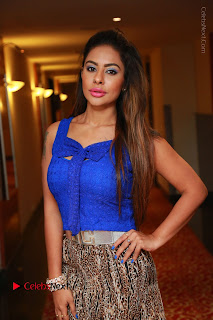 Telugu Actress Srilekha Reddy Latest HD Pos in Sleeveless Blue Top at Muse Art Gallery  0006.JPG