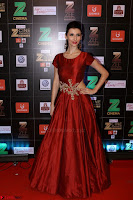 Bollywood Celebrities on the Red Carpet Of Zee Cine Awards 2017 Exclusive 035.JPG