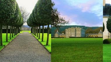 Cogiendo forma. Parterres de Castletown Cox en Irlanda