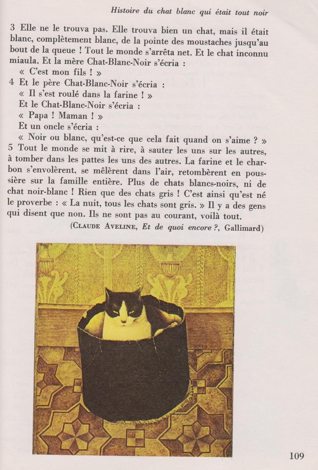 Histoire Du Chat Blanc Qui était Tout Noir Littérature Au Primaire