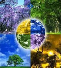 Importancia para el Ambiente