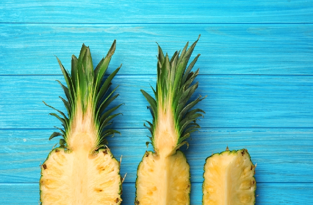 Benefits of Bromelain - How it is of the Essence to Your Health - If you are reading this article, then you are fishing for information on the benefits of bromelain. If I could just pat you on the back right now, I would. Bromelain is very essential to your health and this is the right time for you to know how it can possibly improve your health and wellness.  Getting To Know Bromelain  We all know pineapple-most of us love it. But we are not all aware of the potent enzyme entrenched by Mother Nature in it. Yes, I am talking about Bromelain.  This is an enzyme abundant in pineapples that can aid in the breaking down of proteins in our body and can hinder the appearance and the progress of a multitude of diseases, some of them fatal to humans.  Pineapple bromelain, as we should fondly call it, has been a prized possession by many medicinal practitioners. As a natural treatment, it works wonders.  Benefits of Bromelain as an anti inflammatory agent  The arthritis-afflicted would probably get their hands on the first pineapple that they see when they hear that this fruit is rich in an enzyme that can effectively alleviate inflammation and swelling brought about by arthritis. Similarly, other joint disease sufferers can also benefit from it as well.  Benefits of Bromelain for the heart impaired  Nature has graced us with abundant supply of blood-thinning food sources. Marine animals are one of them, thus the appearance of fish oil supplements, and now, pineapples which are rich in Bromelain have been identified as another source of blood-thinning enzyme.  It can effectively prevent blood clotting which results to a stronger exertion of the heart to pump blood. Blood clotting is also one of the reasons why artery plaque build-up happens. These things contribute to the development of many cardiovascular diseases.  Additional Health Benefits  The above mentioned benefits-those are just the major ones. Bromelain can also help those with muscular aches and pains, those suffe