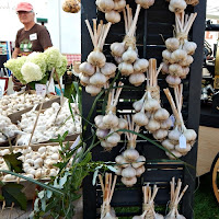 Southern VT Garlic and Herb Festival_New England Fall Events_Black Garlic Hard neck Garlic