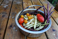 basket of beans, tomatoes, and other vegetales