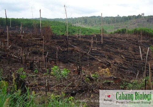 Perubahan Lingkungan dan Faktor-Faktor Penyebabnya