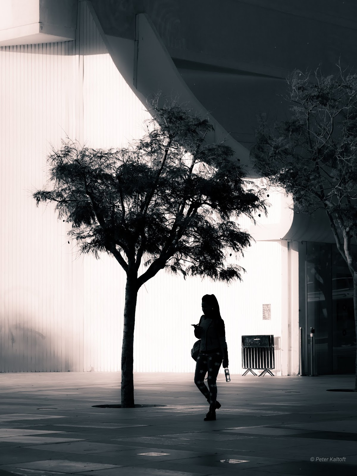 A silhouette of a young woman passing a tree on the Bimah Square in Tel Aviv.