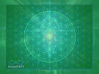święta geometria wszechświat kwiat życia wibracja merkaba