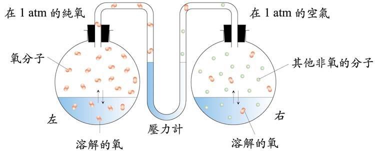 國中2年級理化【溶解度】 ~ 龍吳影的筆記本