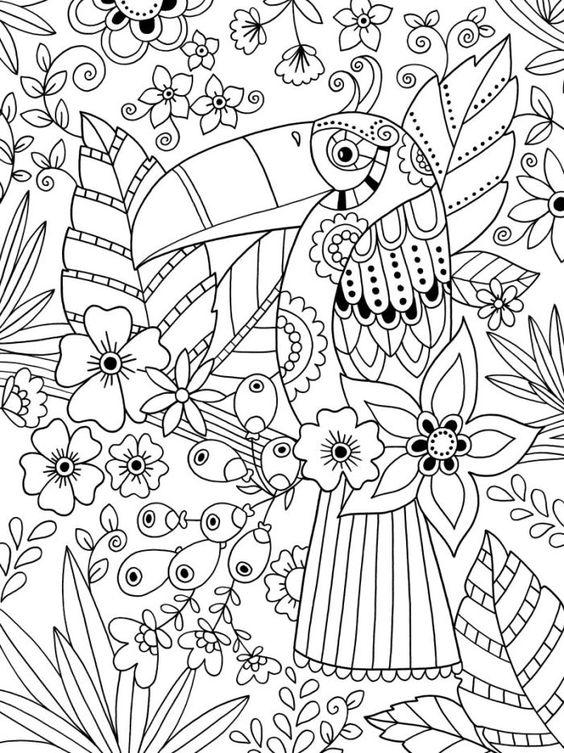 Tranh tô màu con vẹt trong bụi hoa