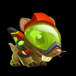 Dragon Mort-au-Rat (Enfant)