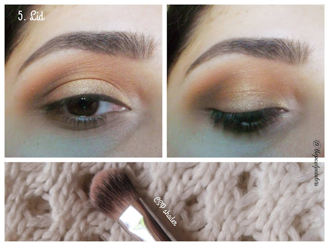 Hooded Eyes Tutorial Colorstudio Pro shader brush