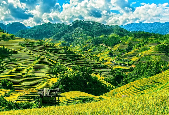 Mu Cang Chai: One of the World's most colorful places according to Cn Traveler 1