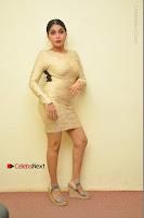Actress Pooja Roshan Stills in Golden Short Dress at Box Movie Audio Launch  0130.JPG