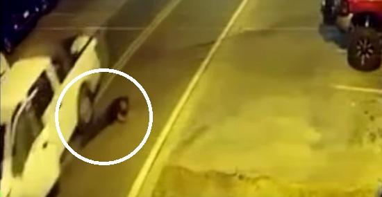 Motorista bêbado atropela si mesmo