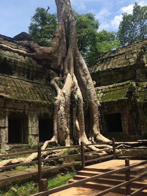 Ta Phrom - Angkor Wat (Camboya)