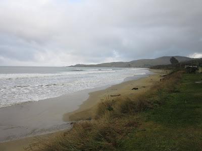 Playa de Kaka Point. The Catlins, en Nueva Zelanda