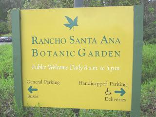 Dan 39 s hiking blog rancho santa ana botanic garden april - Rancho santa ana botanic garden wedding ...