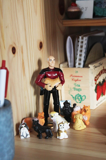 Jean-Luc Picard, Small Dogs, Star Trek, Small Dog Electronics, Studio, Anne Butera, My Giant Strawberry