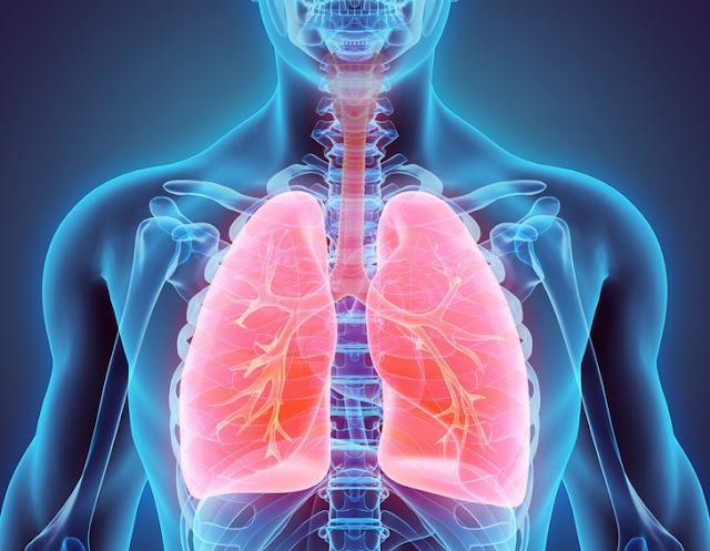 Pembersih paru-paru